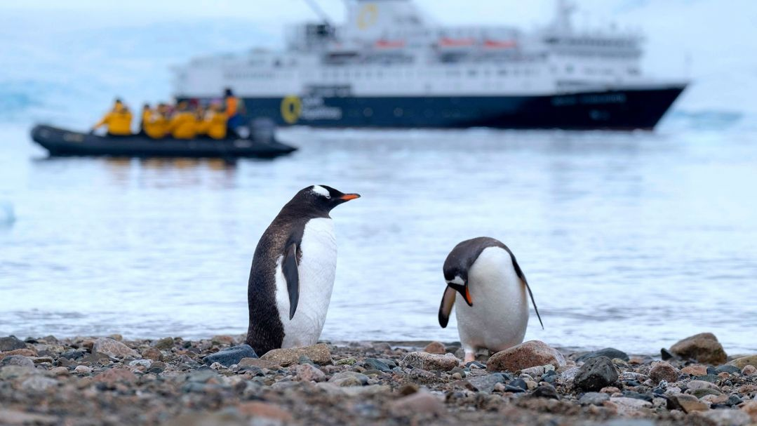 Two penguins on land in the Antarctic with a research runabout and research vessel in background