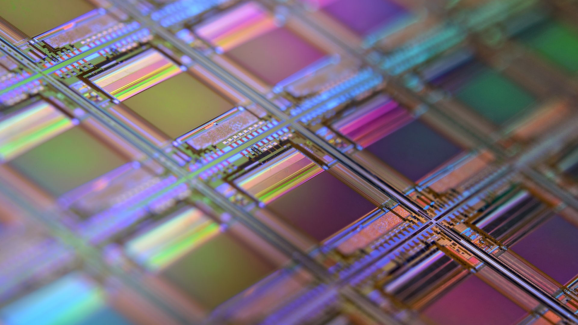 A macro of a silicon wafer. Each shiny coloured square is a chip with microscopic transistors and circuits.