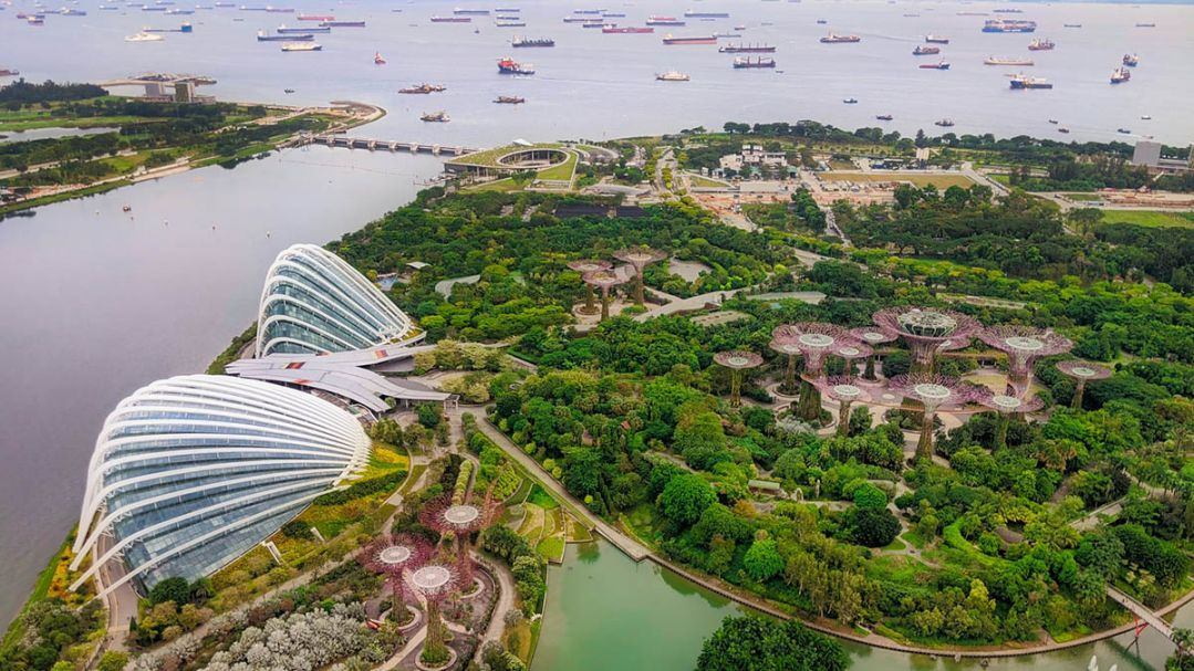 Aerial view of botanic gardens, large glass atrium buildings and harbour