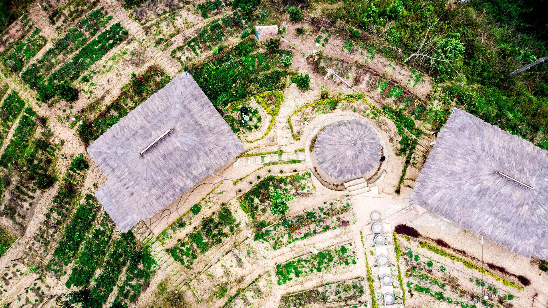 Aerial view of three large huts surrounded by gardens and farmland