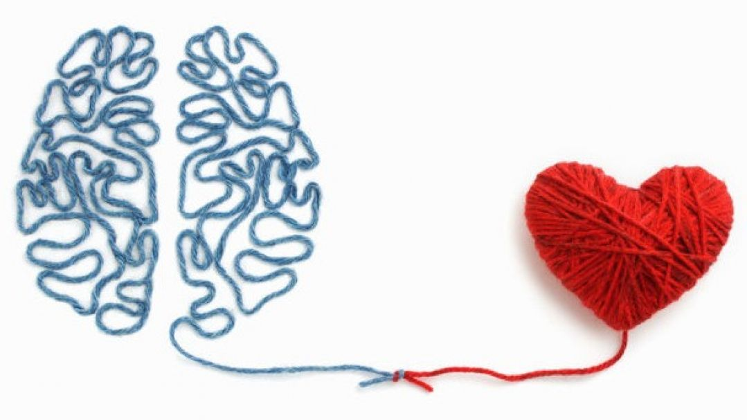 representative illustration of heart and brain connection