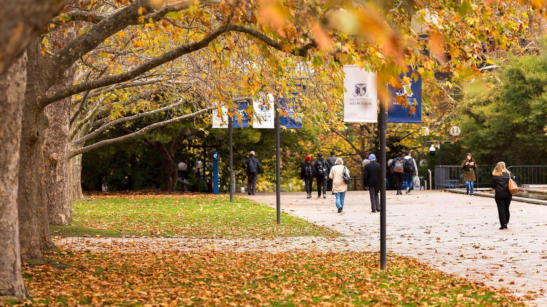 people walking by the south lawn in autumn